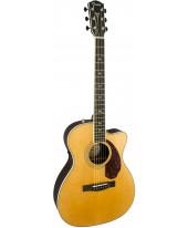 Fender PM-3 Deluxe Triple-0 NAT