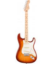 Fender American Pro Stratocaster MN SSB