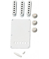 Fender Vintage Style Stratocaster Kit White