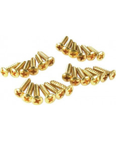 Fender Pickguard Screws Gold 24