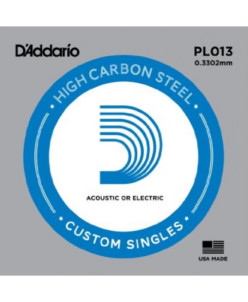 DAddario PL013 Single String