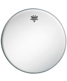 Remo Ambassador Coated 10""