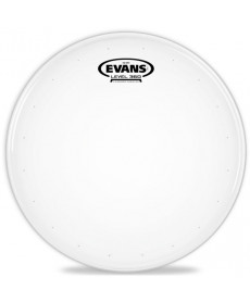 Evans B13 Genera HD Dry