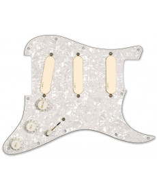EMG DG20 Kit Pickguard
